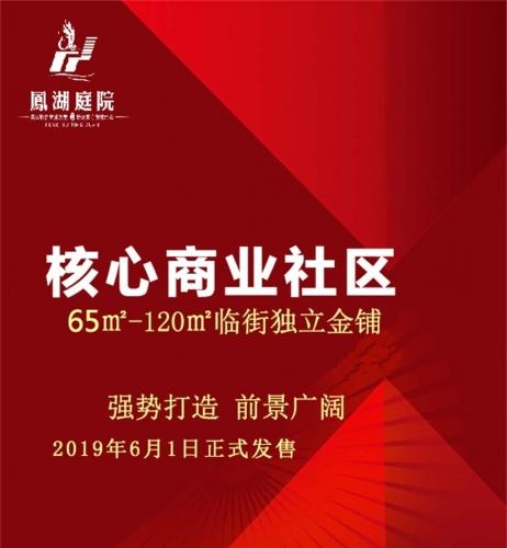 开远凤湖庭院核心商业社区65㎡-120㎡临街独立金铺2019年6月1日正式发售!
